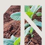 """Seminário """"A Terra nos Objetivos de Desenvolvimento Sustentável"""""""
