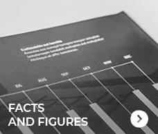 Factos e Números