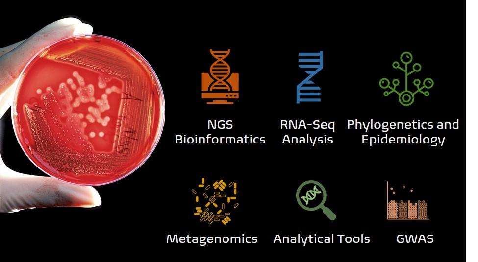 """Curso Não Conferente de Grau """"Pathogen Multiomics and Bioinformatics"""""""